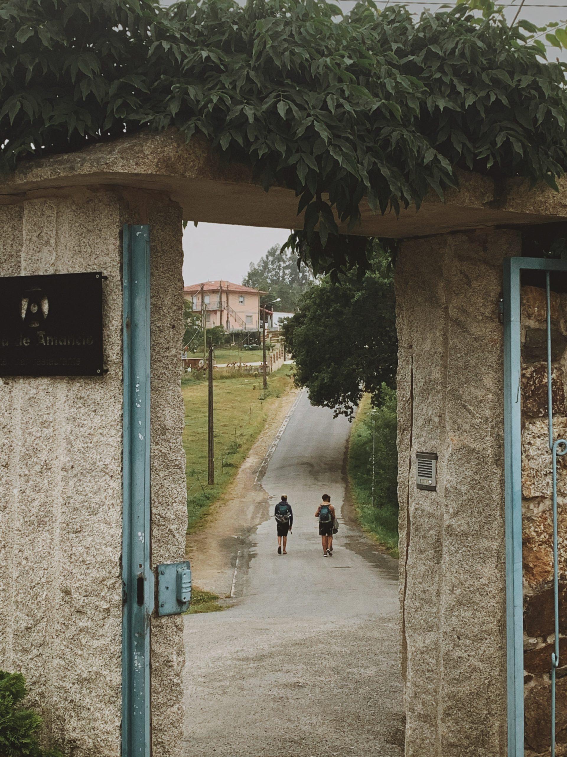 camino 5